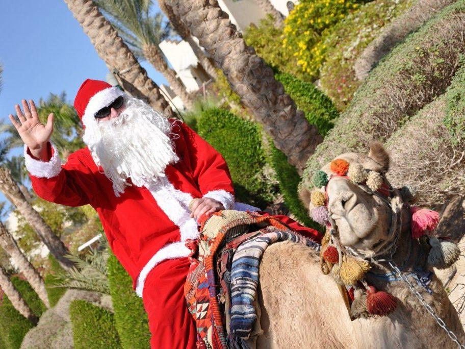 Египет на Новый год от 490 $. Раннее бронирование.